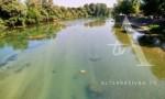 """Bačen vijenac sa """"mosta spasa"""" na Uni u spomen stradalim u """"Oluji"""", 6.8.2019. Foto: Alternativna TV"""