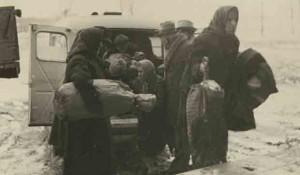 Transport u logor Jasenovac Foto: Arhiv Vojvodine, Večernje novosti