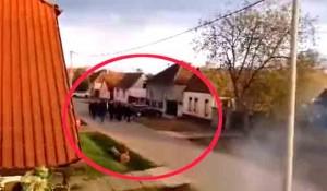 Borovo na Uskrs: Grupa Hrvata peva o klanju Srba Foto: screenshot Sputnjik, Općina Borovo